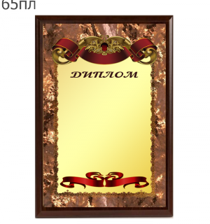 65пл.png